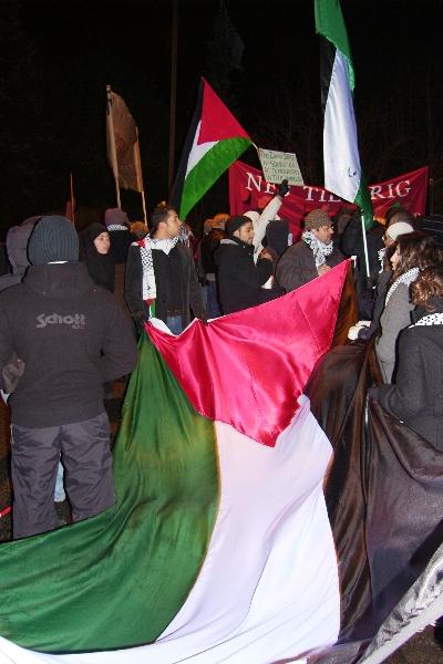 Palæstinensisk flag