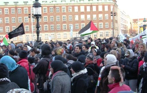 Lad Gaza Leve Christiansborg 17. januar 2009