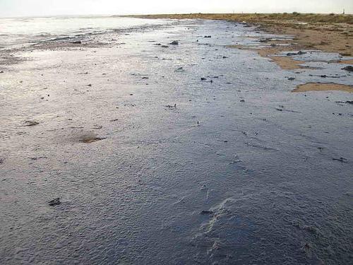 Olieforurening fra BP-katastrofen i Den Mexicanske Golf