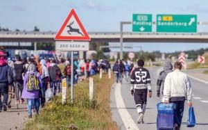 denmark-refugees