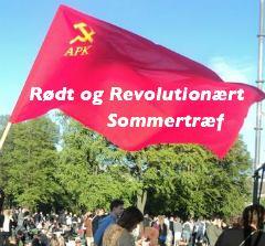 roedt_og_rev_sommertraef