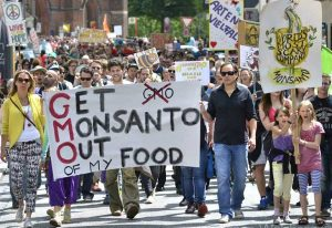 get-monsanto-out-of-my-food-copy