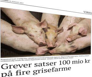 bregentved gods - 4 svinefarme