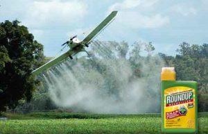 Monsanto-Roundup-590x380