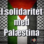 i_sol_med_palestina